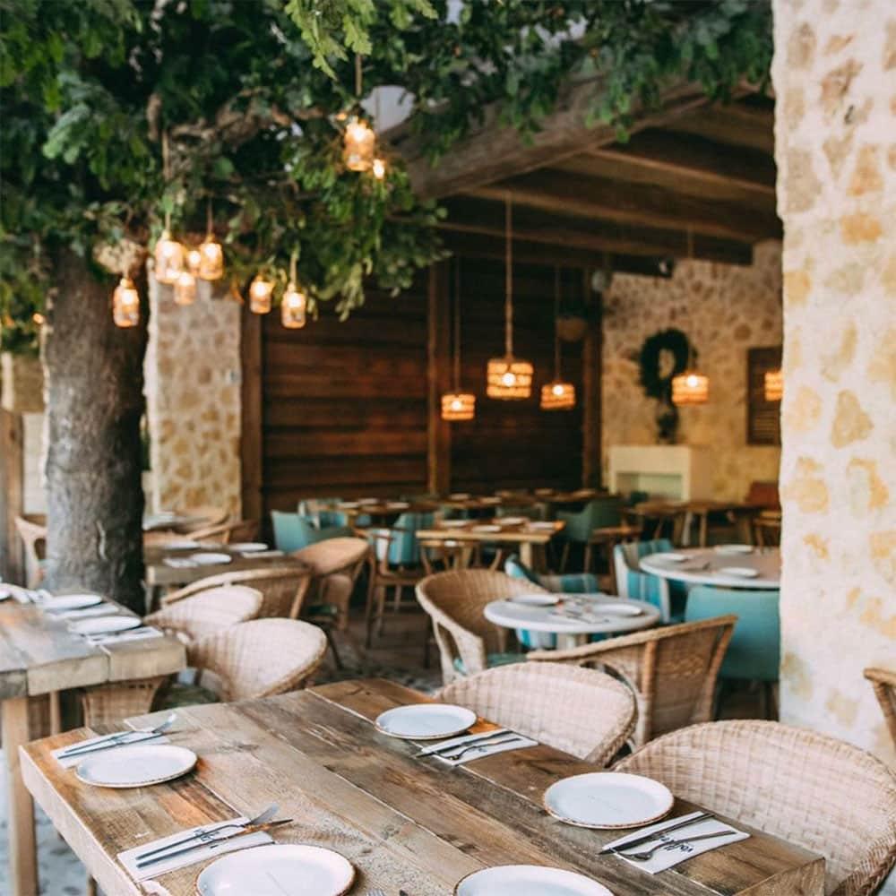 5 Restaurantes en Valencia con menú de mediodia por menos de 15€ 7